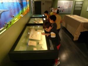 Sala de paleontologia