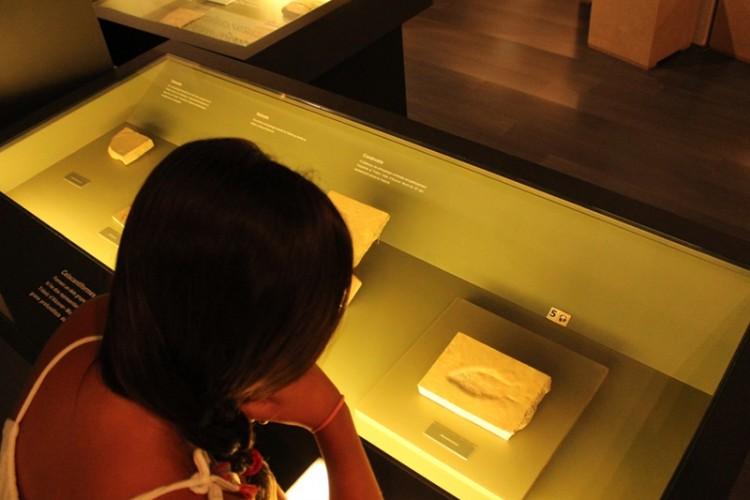 El Museu inaugura Descobrim. Patrimoni als museus i col·leccions de l'Alt Camp