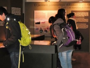 Sala de Paleontologia - Institut