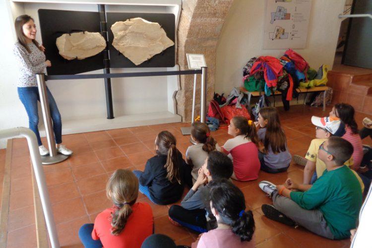 Contacontes Els fòssils ens parlen del passat, a la Biblioteca i visita al museu