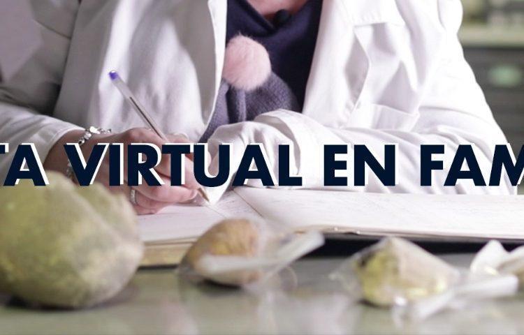 Celebrarem el Dia Internacional de Museus amb una nova visita virtual en família
